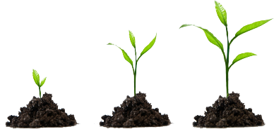 grow your business with inbound marketing