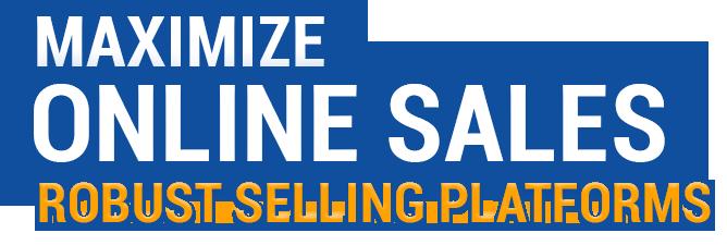 Maximize Online Sales