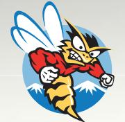 Honey Stinger logo-1