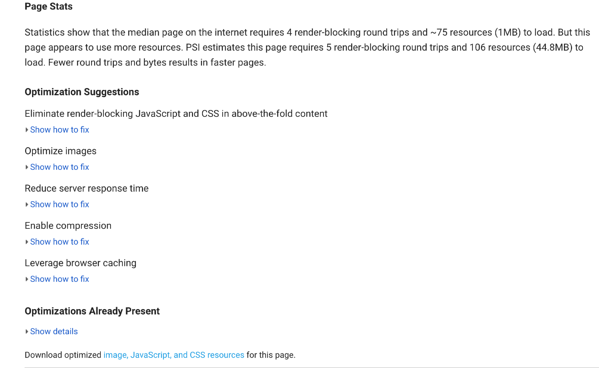 Page Speed Insights Report Example