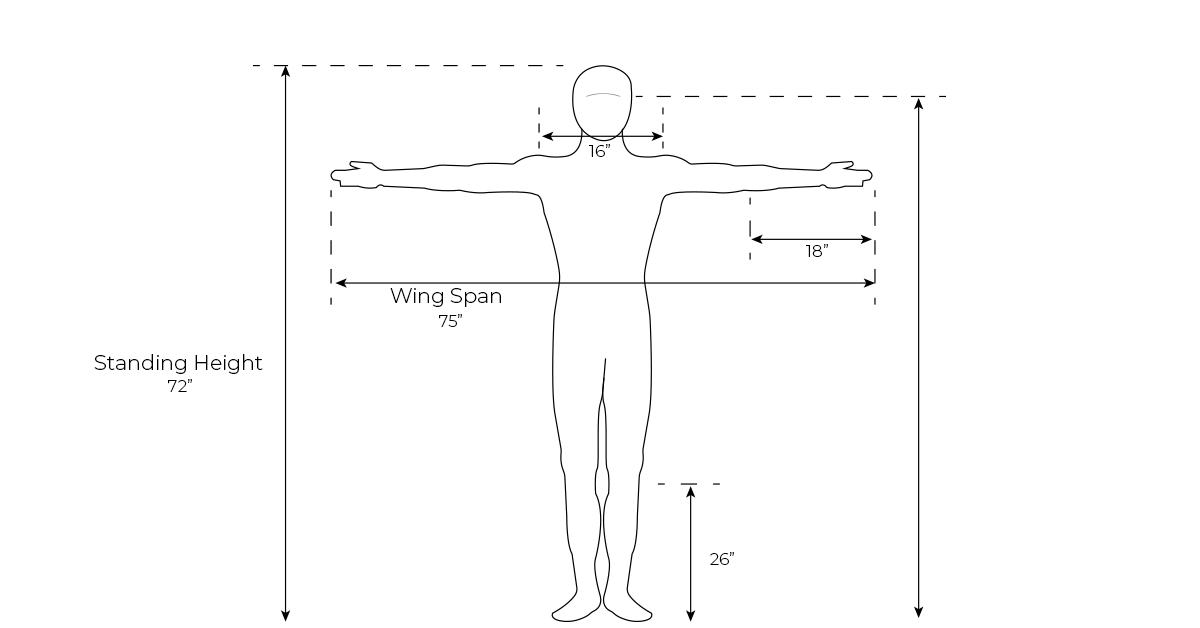 Ergonomics diagram human illustration