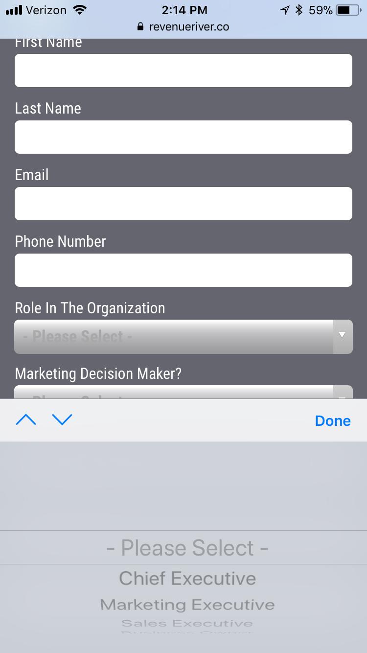 Mobile Responsive Website Example
