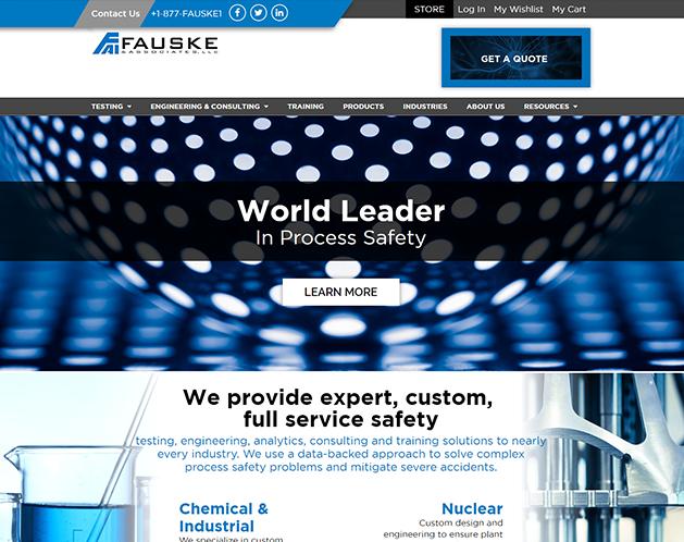 Fauske Custom Website Development Services
