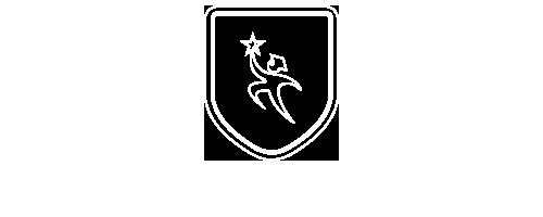 Princeton College Consulting Logo