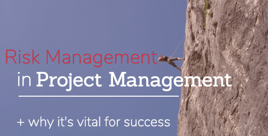 risk management in project management
