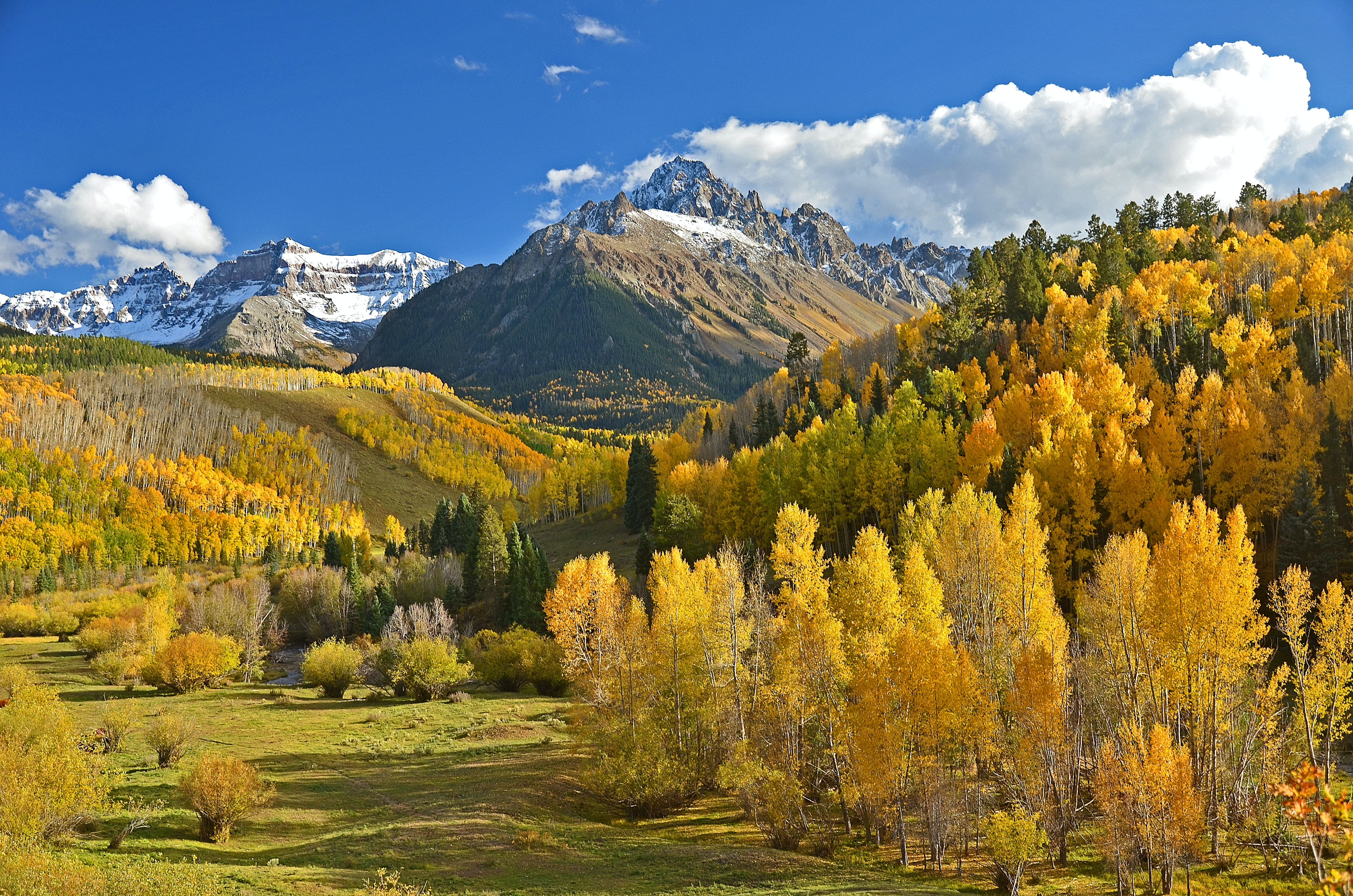 Rebecca Fassler Interests Background Yellow Mountain